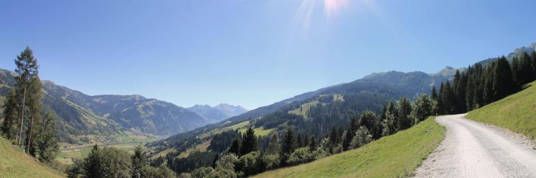 Am Weg zur Amoser Hochalm in Dorfgastein
