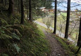 Die letzten Meter am Trail