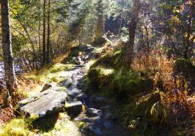 Der Wanderweg bergauf ist steil und erfordert gute Kondition
