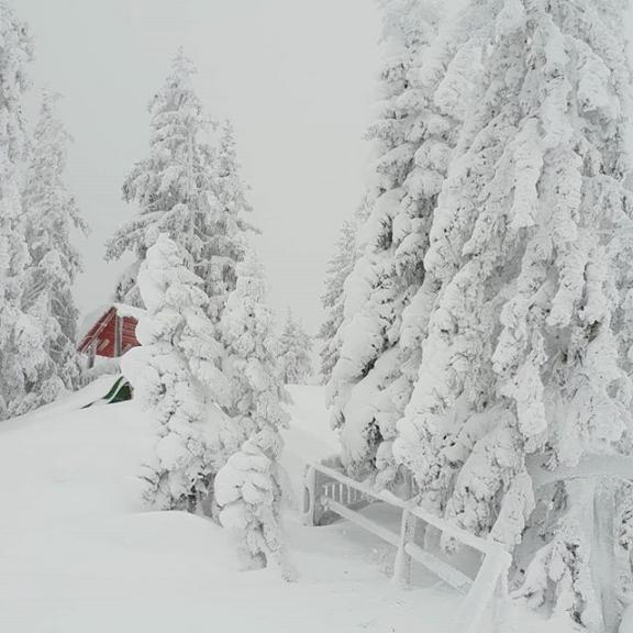 #dorfgastein #gasteinertal #gastein #skifoarn #skifahren #winterurlaub #winterwunderland #skigaudi #ski #schnee #neuschnee #fulseck