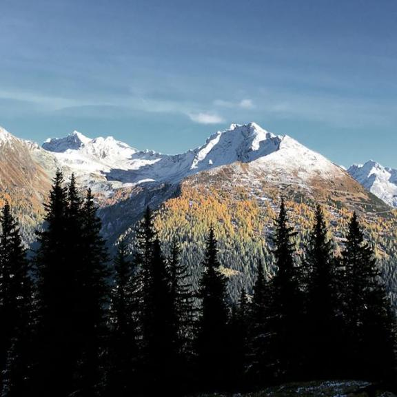 What a beautiful autumn scenery 🍁🍂🍃🏔 #brickheadwear #mountains #gasteinmoments #autumn #autumnphotography