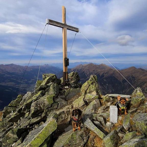 #graukogel #gipfelkreuz #badgastein #gasteinertal #gasteinmoments #austria🇦🇹 #salzburgerland #mountains #mountainlovers #hikinglife #hiking #adventure #amazingnature #amazingplaces #dogslife #mydog #hikingwithdogs #hikingdog #wanderlust #wanderer #wanderhund #trip #panorama #canonphotography #alpen #alps