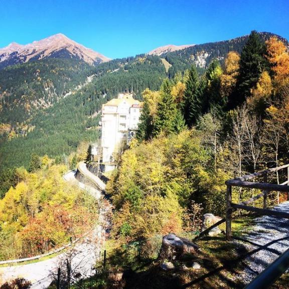 😌 best time of the year #autumn #gasteinmoments #heimatliebe #naturelovers #autumcolors #herbst