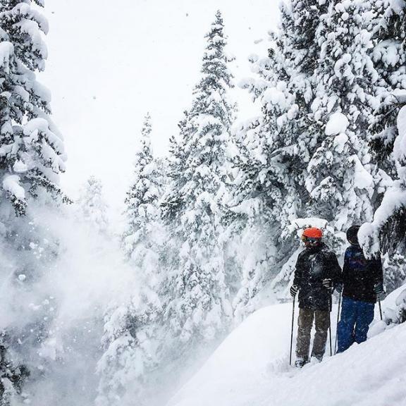 Bob og Tue var her også ❄️ @jacque0086 @biede84 #snowdump #offpist #moresnow #graukogel #badgastein