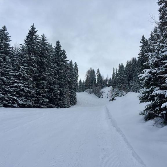 Skitour auf den Graukogel #graukogel #graukogelhütte #winterwonderland #gasteinertal