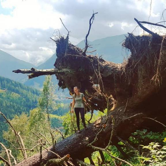 #poserhöhe #hiking #hikinginaustria #wanderurlaub im #gasteinertal #wanderlust #naturemakeshealthy #mountainbike #tree #baumfällt #amazing #naturelove #lovelife #liveeachdaylikeitsyourlast #senkrecht #hulk? #whatnatureisabletocreate #intersportwandertag