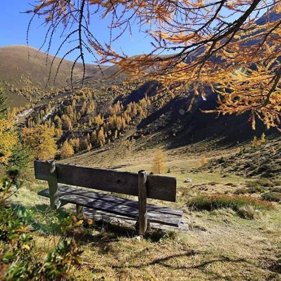 #rastöstalm #badhofgastein #gasteinertal #gasteinmoments #autumn #herbst #ősz #amazingnature #amazingplaces #natural #természet #outdoor #landscape #landscapes #salzburgerland #mountains #loveaustria #lovemoutains #panorama #ruhe #peace
