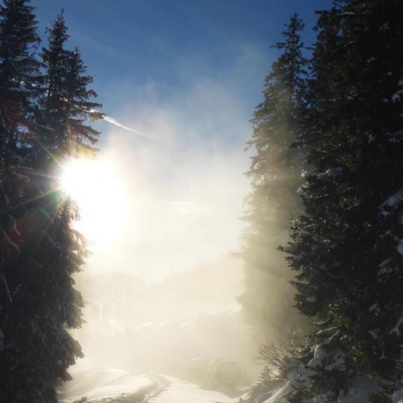 One more picture from our skiing holidays in #gastein. Powder snow for nearly a full week!!! . #powderday #powderskiing #powdersnow #skiing #badgastein #angertal #hofgastein #badhofgastein #sun #sky #bluesky #greattime #greattimes #schlossalm #schlossalmbahn #52wiesnerwochen