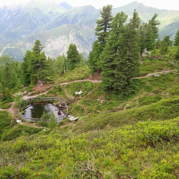 Dag 9 tog vi Graukogelliften upp till toppen och gick runt i tallskogen med de särskilda Zirbeltallarna vars kottar de använder till att färga snapsen klarröd. Matsäck och skräpplockning. Därefter bubbelpool med utsikt. #graukogel #zirbel #norrøna #jacuzzi #view