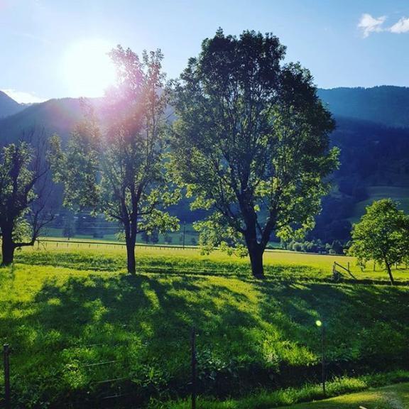 Zeit im Garten genießen #gasteinmoments #badhofgastein #mountains #nature #summer #happyme #happylife