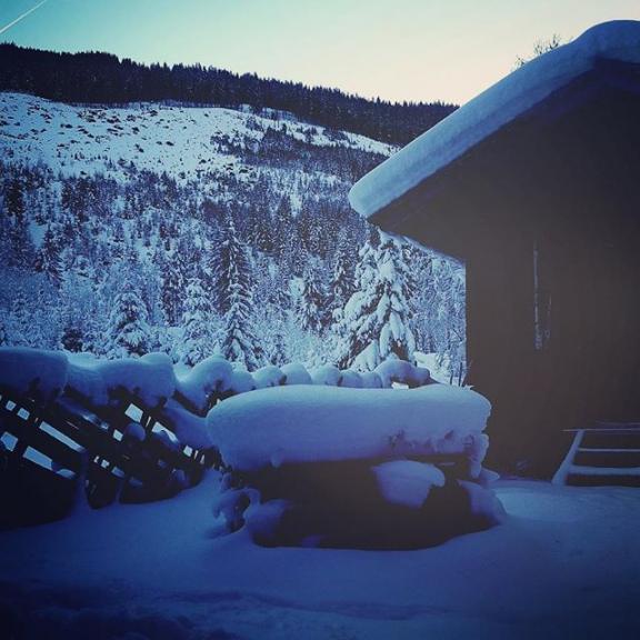 ❄☃️ #winter #snow #mountains #cottage #coldoutside #dog #paradise #angertal #austria #enjoy #explore