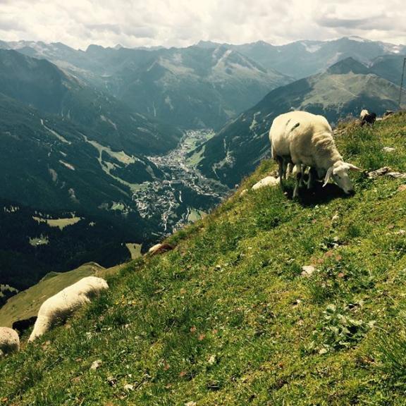 #magnificent #view over #badgastein 🐑🐑🐑 #visitbadgastein #gamskarkogel #salzburgerland #hohetauern #austria #alps #heimat #berge #hiking #gipfelglück  #schafe #sheep #summer #whataday #happy #feiertag