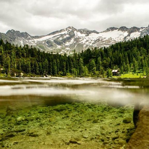 #Austria#holidayaustria#mountans#Berge#water#hiking#underwater#Unterwasser#Canon#photography#stinamydzynphotography#trees#steine#holiday#sun#summer#clouds#nature#Natur#green#Erholung#pictureoftheday#sea#Reedsee#nice#dream#Traum