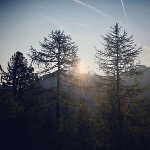 Good morning world ☀️🌲🏔🍂getting some inspiration for more good stuff #sunrise #alps #hikingseason #trees #brickheadwear #salzburgerland #gasteinmoments #weltbekühmt